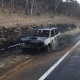 Mobil Terbakar Usai Tabrak Kanguru di NSW, 3 Penumpang Selamat