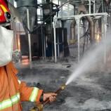 Selama 8 Bulan, Tercatat 51 Kebakaran Terjadi di Pasuruan